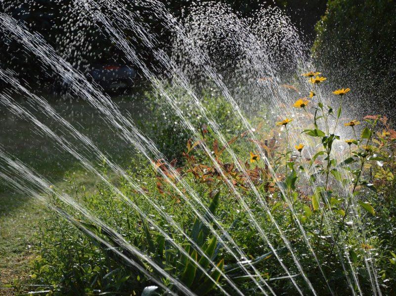 irrigazione_giardino